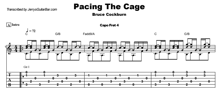 Bruce Cockburn - Pacing The Cage Guitar Lesson Tab Preview